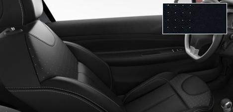 Intérieur Citroën DS3 Cuir perforé Mistral